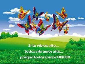 Si tu vibres alt... tots vibrem alt... perquè tothom és UN!!!