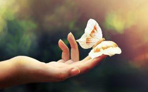 Mariposa en una mano abierta